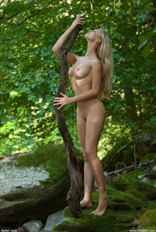 Фигуристая красавица с сочными сиськами 3 размера гуляет в лесу голышом 24 фото