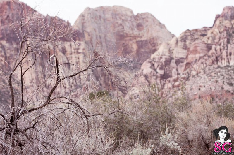 Татуированная крошка позирует в горах 6 фото