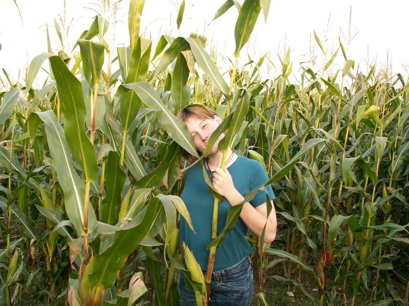 18летная девушка из деревни трахает киску кукурузой в поле 1 фото