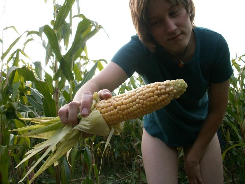 18летная девушка из деревни трахает киску кукурузой в поле 21 фото